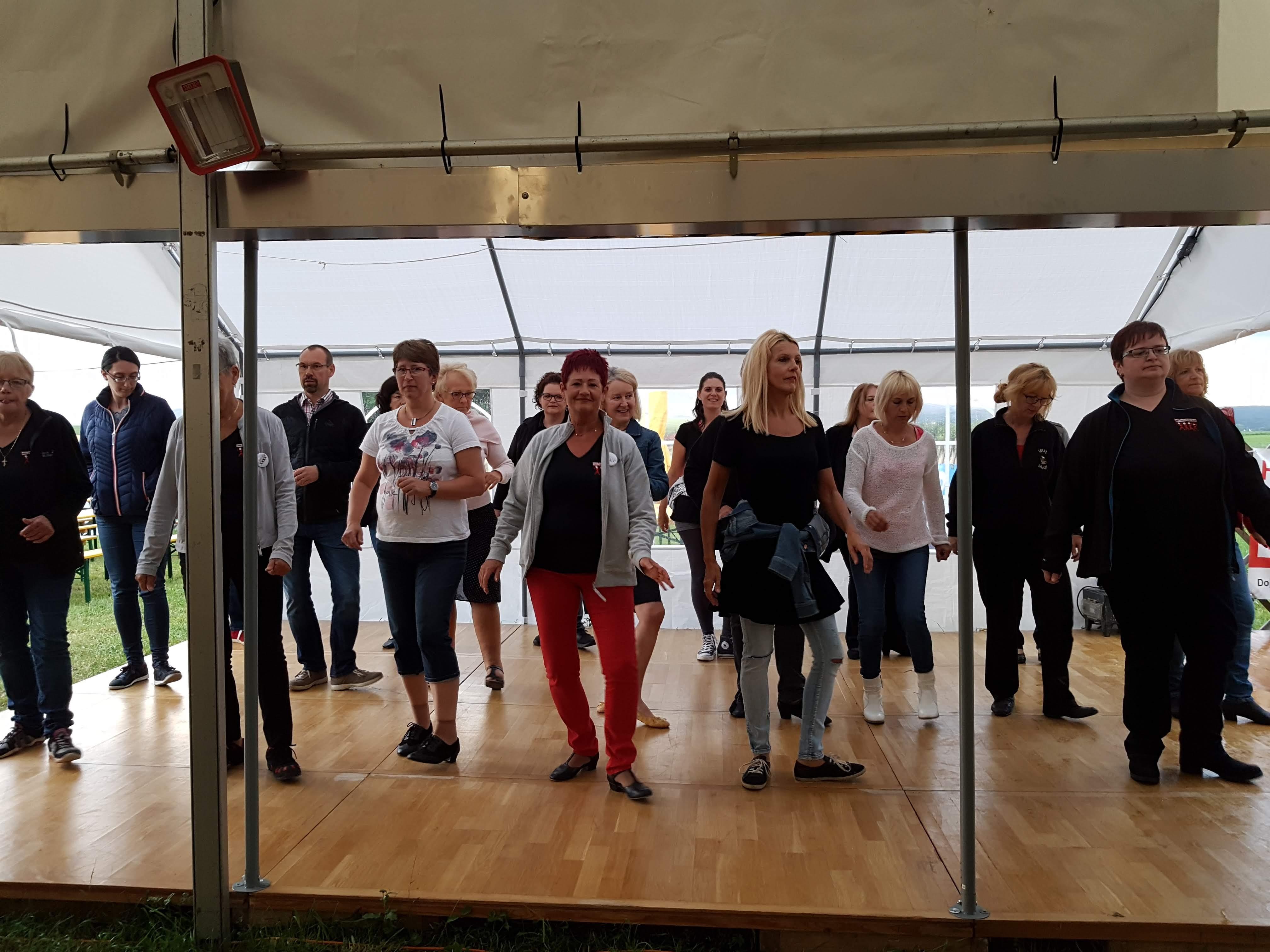 LD Party Unterwolfsbach Tänzer